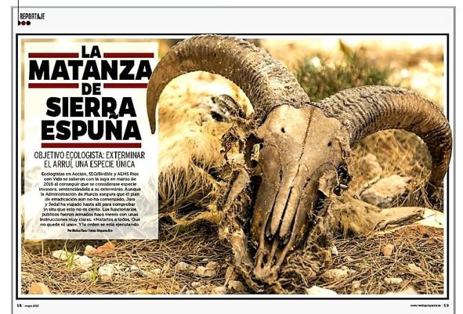El Abogado Diego de Ramón Denuncia en Fiscalía el Exterminio Violento y Cruel del Arruí en Sierra Espuña
