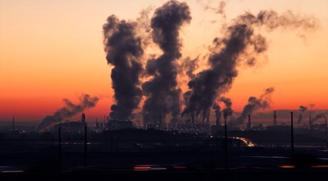 """Cartagena: """"¿Día Mundial del Medio Ambiente?"""""""