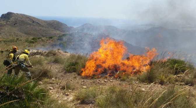 Protocolo Contra Incendios por Altas Temperaturas