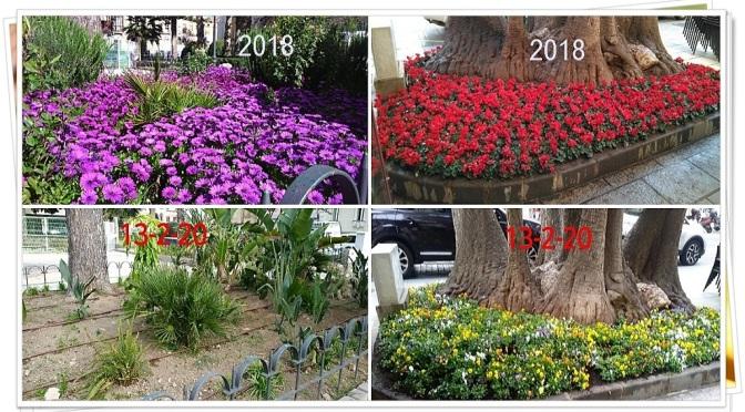 Jardines de Cartagena en 2018 y en 2020, Galería de Imágenes
