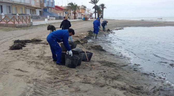 """Valdés: """"El PSOE, incapaz de dar mascarillas a los sanitarios, pretende que las brigadas limpiasen playas en plena pandemia"""""""