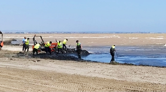 """El Mar Menor: una laguna enferma, repleta de algas y fangos y con olor a """"podrido"""""""