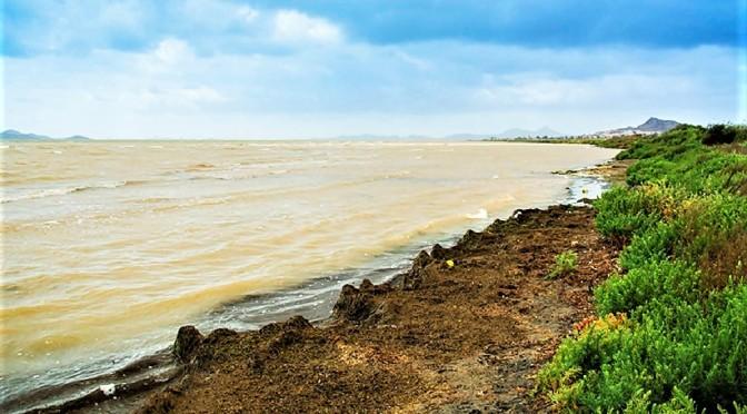 Mar Menor: historia de un colapso ambiental que pudo ser evitado – Miguel A. Esteve