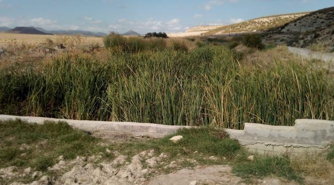Pedanías altas de Lorca: devastación física, política y moral