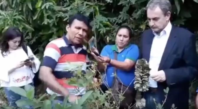 Zapatero visitó plantaciones de coca en 2018 con una conocida narcotraficante